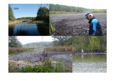 Foto zur Meldung: Herbstwanderung rund um den Herrensee