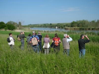 Foto zur Meldung: Fachgruppenexkursion zum Salzamäander bei Langenbogen (Sachsen-Anhalt)