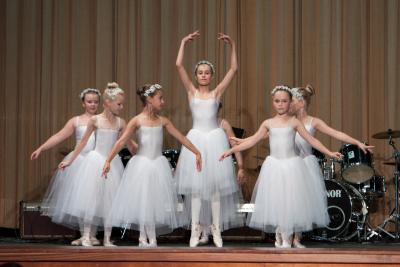Foto zur Meldung: Vielfalt verschiedener Tanzstile