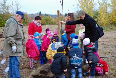 Foto zu Meldung: Kita-Kinder aus Rückersdorf übernehmen Baumpatenschaft