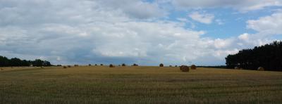Foto zu Meldung: Zweiter Bericht zur Entwicklung ländlicher Räume beschlossen