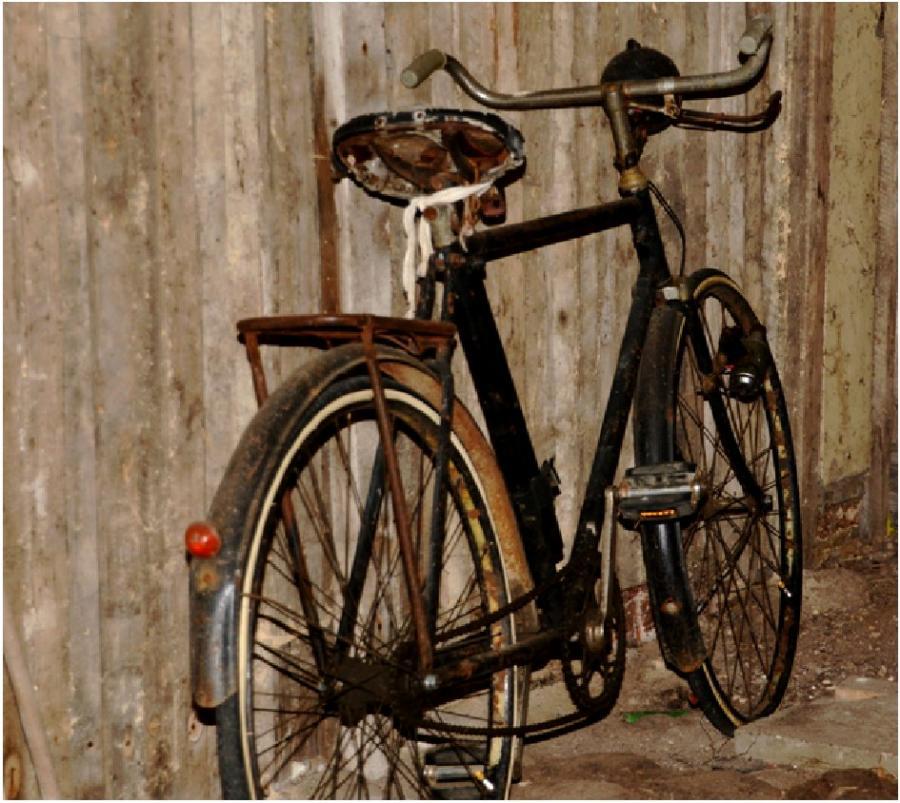 amt ludwigslust land gesucht wird das lteste fahrrad in. Black Bedroom Furniture Sets. Home Design Ideas
