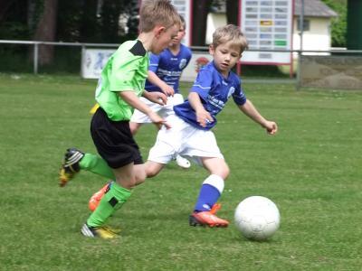 "Foto zur Meldung: Jugend kickt um den ""Germanen-Sommer-Cup"""