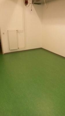 Foto zu Meldung: Schön grün! Neuer Bodenbelag in der Herrenkabine des SVW!