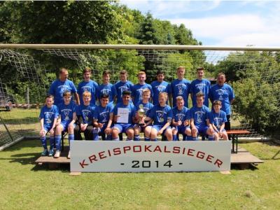 Foto zur Meldung: C-Junioren - Kreispokalsieger 2014