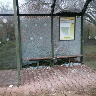 Foto zu Meldung: Das Ordnungsamt der Stadt Nienburg (Saale) bittet um Ihre Mithilfe