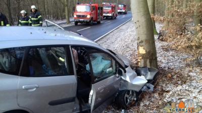 Vorschaubild zur Meldung: 2 Menschen wurden bei Unfall verletzt