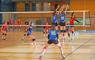 Erkämpften sich am 11.03. den Meistertitel: Die Volleyballerinnen des VSV Havel (Bild: Marleen Thoß)