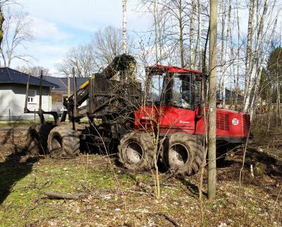 Foto zu Meldung: Forstwirtschaftliche Arbeiten unabweisbar