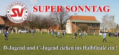 Foto zu Meldung: D- und C- Jugend stehen nach Siegen im Halbfinale !!!