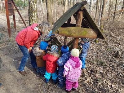 Foto zu Meldung: Eichhörnchen im Märchenwald gesucht