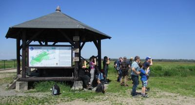 Foto zur Meldung: Vogelrepublik: Natur- und Landschaftsführer gesucht