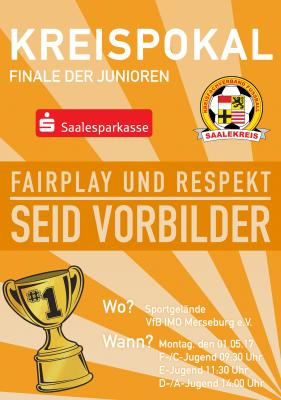 Foto zur Meldung: Mitteilung Jugendausschuss: Kreispokalfinale am 01.05.2017