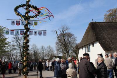 Foto zur Meldung: 1. Maibaumfest