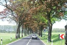 Vorschaubild zur Meldung: Verkehrssicherheit auf Landstraßen
