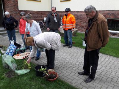 Foto zur Meldung: Rege Teilnahme am 16. Rehfelder Pflanzentauschmarkt