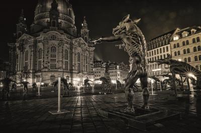 """Die """"Wölfe""""-Ausstellung in Dresden"""