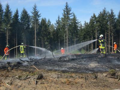 Vorschaubild zur Meldung: Einsatz Flächenbrand
