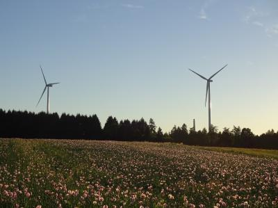 Foto zu Meldung: Stromerzeugung der Windenergieanlagen