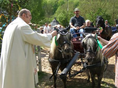 Vorschaubild zur Meldung: 90 Pferde und unzählig viele Menschen
