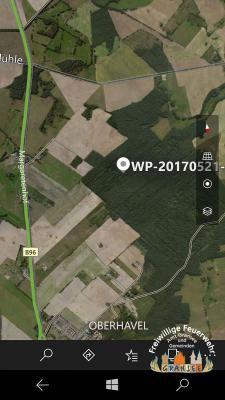 Foto zur Meldung: Einsatzstichwort B: Wald
