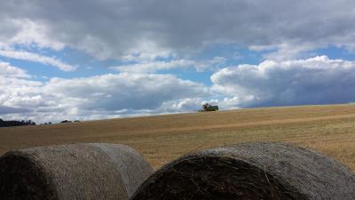 Foto zu Meldung: Europäisches Parlament will die Konzentration von Agrarland stoppen