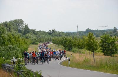 Foto zur Meldung: Tour de OSL feiert Jubiläum mit neuem Teilnehmerrekord