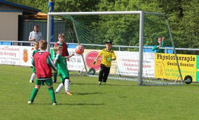 Foto zur Meldung: F-Jugendmannschaften kämpfen um Pokalsieg