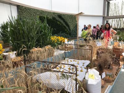 Vorschaubild zur Meldung: Medaillenregen auf der Internationalen Gartenausstellung