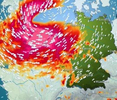 Foto zur Meldung: Sturmschäden