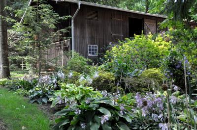 Foto zur Meldung: Kräutermärchen – zauberhafte Geschichten von Pflanzen & Kräutern: Literarisch-botanische Abendführung mit Juliane Zickuhr und Dana Kamin