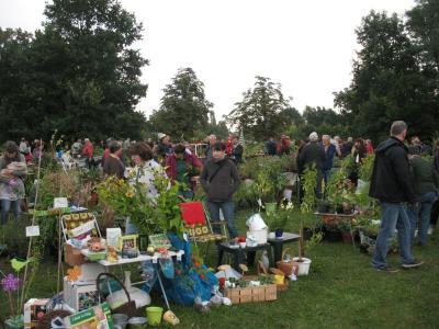 Die nächste Ernte- und Pflanzenbörse findet am 16. September statt. (Foto: Lokale Agenda 21 Falkensee)