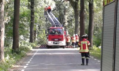Vorschaubild zur Meldung: Einsatz Baum über Fahrbahn Maiburgstraße