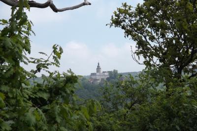 Blick von der Stempelstelle 204 auf die Burg Falkenstein