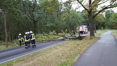 Foto zu Meldung: Ortswehren beseitigen Sturmschäden