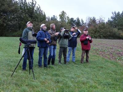 Foto zur Meldung: Herbstexkursion in der Umgebung Birkenfelde/Rumerode