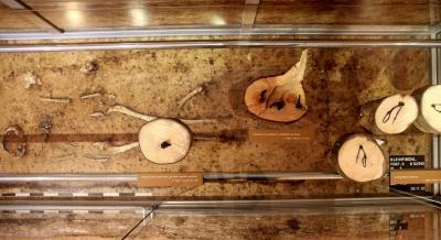 Vorschaubild zur Meldung: Das Keltengrab von Kleinfischlingen