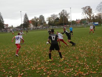 Foto zu Meldung: + + + Wochenendvorschau FC Seenland Warin  28./29.Oktober + + +