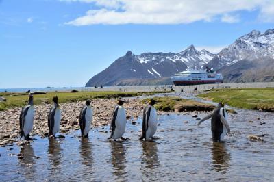 Foto zur Meldung: Antarctica: Reisen in eine faszinierende Tier- und Eiswelt