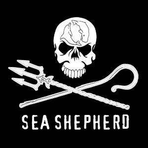 Vorschaubild zur Meldung: Sea shepherd - Classe 5b - Mai 2017