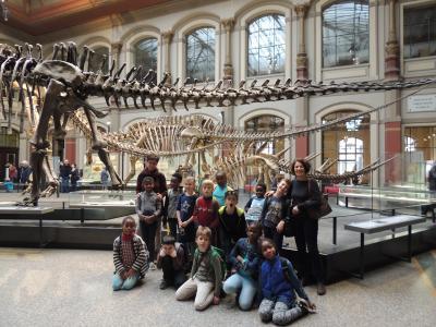 Klasse 3d im Naturkundemuseum