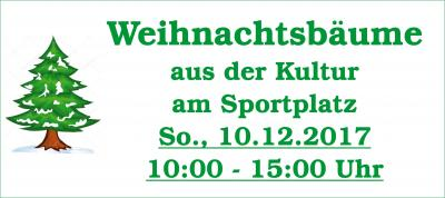 Vorschaubild zur Meldung: Weihnachtsbaumverkauf am Sonntag, 10.12.