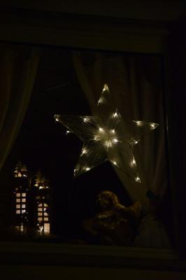 Vorschaubild zur Meldung: 1. Adventsfenster - in der festlich illuminierten Gartenlaube