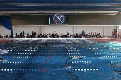 """Foto zur Meldung: Schwimmwettkämpfe 2017 der drei Düsseldorfer Förderschulen """"Geistige Entwicklung"""""""
