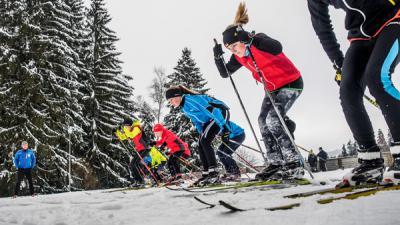 Foto zur Meldung: TSV-Meisterschaften abgesagt - NK Lauf findet statt