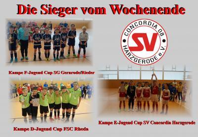 Foto zur Meldung: Der SV Concordia 08 Hallencup 2018 endet mit E-Jugend Turniersieg !