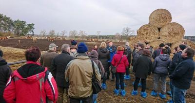 Geschäftsführer Jürgen Pisker erläutert die ökologische Rinderhaltung der MURI GmbH Lübben
