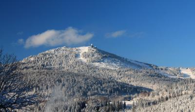 Winterlicher Arberwald