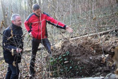 Vorschaubild zur Meldung: Forstarbeiten: Straße wird zwischen Meckesheim und Mönchzell gesperrt