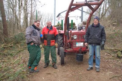 Foto zur Meldung: Baumfällaktion am Sportplatz